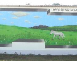 Graffiti Schwetzingen Studio68 - Reiterverein